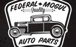 Federal Mogul concept